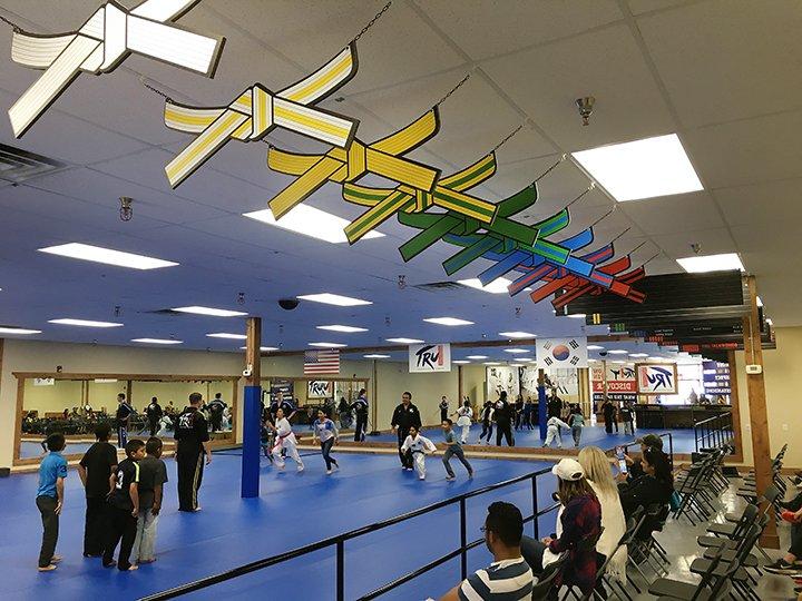 TRU Taekwondo Belt Signs